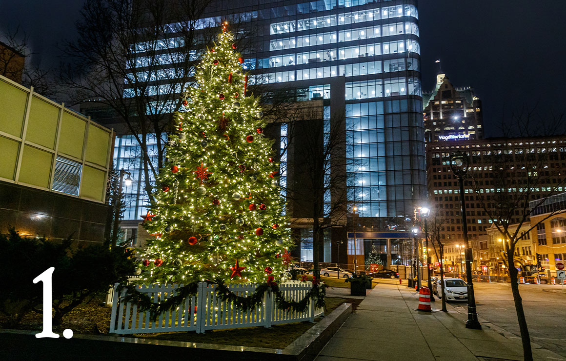 City of Milwaukee Christmas Tree